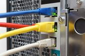 pic of nic  - Network Server with multiple network cables  - JPG