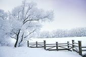 picture of sleet  - Winter - JPG