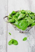 stock photo of sorrel  - wet sorrel leaves in a colander on the old wooden background - JPG