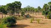 stock photo of shacks  - Rustic shack in the jungle of Myanmar  - JPG