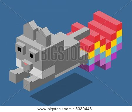 nyan cat. 3d pixelate isometric vector
