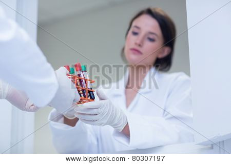Biologist giving blood sample to his colleague in hospital
