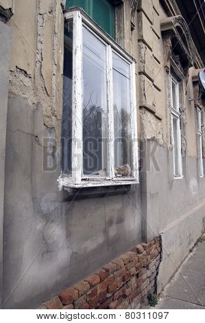 Kibic Window