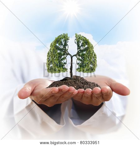 Conceptual image of green tree in hands shaped like human lungs