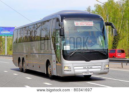 Man R08 Lion's Top Coach