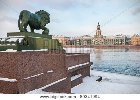 Cabinet Of Curiosities In St. Petersburg At Dawn In Winter