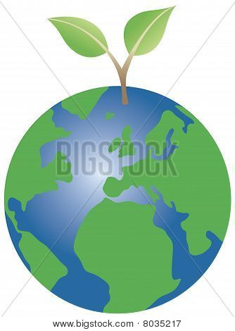 Plant growing from globe