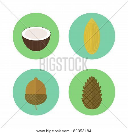 Set Of Icons Nuts. Vector Elements For Design