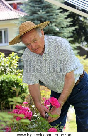 Active Senior In The Garden