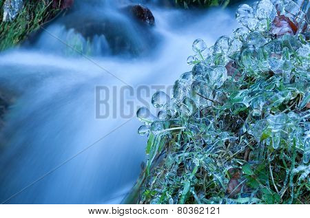 Icicle And Frozen Water On Grass By River