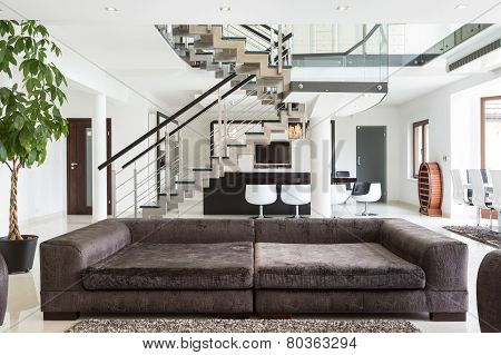 Designed Sofa In Expensive House