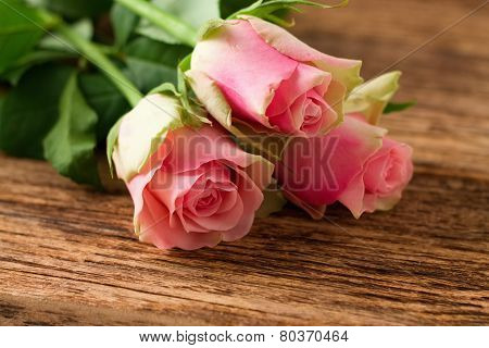 Three Beautiful Pink Roses On Wooden Board