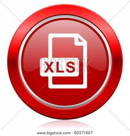 xls file icon