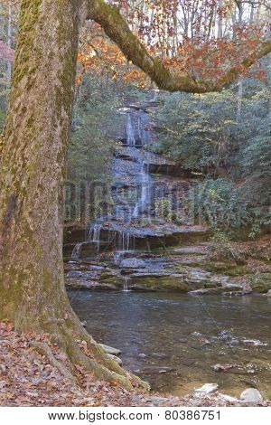Autumn Woodland Stream And Waterfall