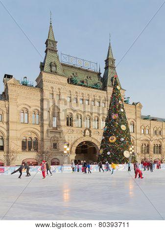 Christmas Fir And People Are Skating