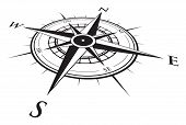 picture of compasses  - a black and white vector compass background - JPG