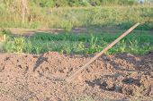stock photo of hoe  - closeup of a hoe in the soil - JPG