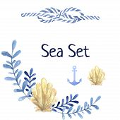 pic of shells  - Hand drawn watercolor sea  set - JPG
