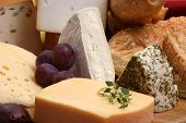 image of cheese platter  - cheese platter with some organic fresh cheese - JPG