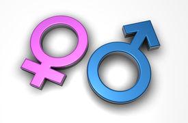 foto of male female  - Male and female 3d symbols - JPG