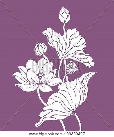 White Lotus On Purple Background