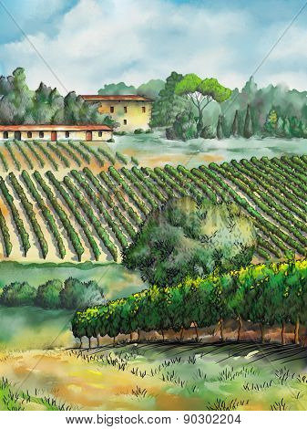 Beautiful vineyards landscape. Digital watercolor.