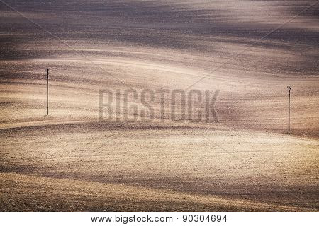 Grunge field waves background, South Moravia, Czech Republic