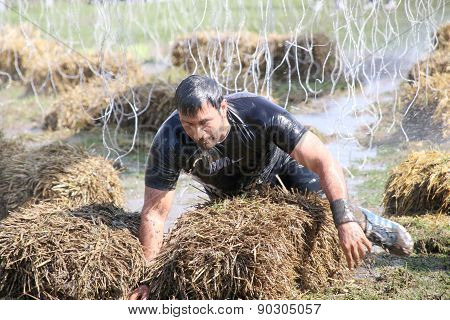 Muscular Built Man Crawling Over Sheaf Of Hay