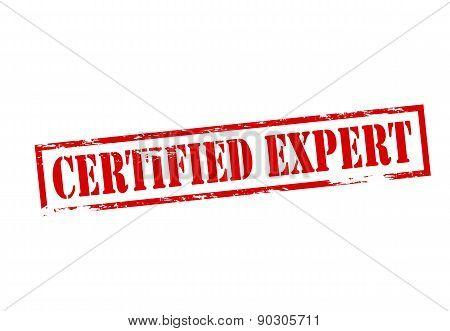 Certified Expert