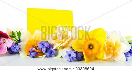 Beautiful bright flowers with card isolated on white