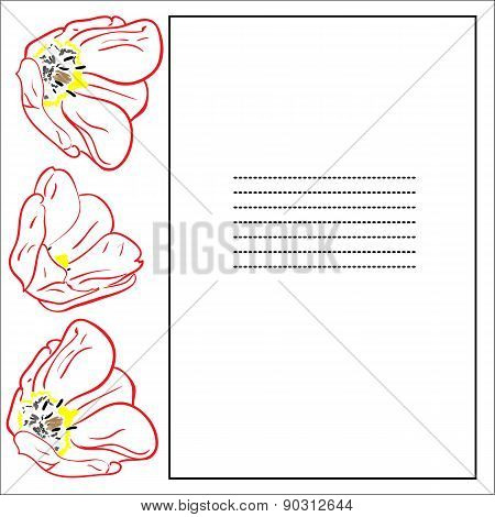 Greeting Card With Tulips And Frame.