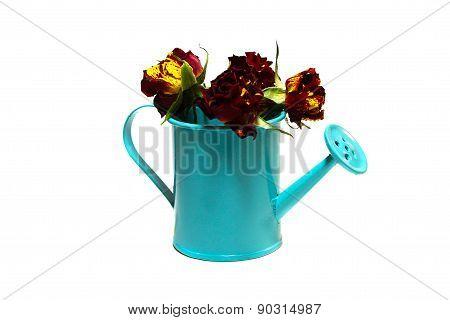 Garden Handshower  With Flowers