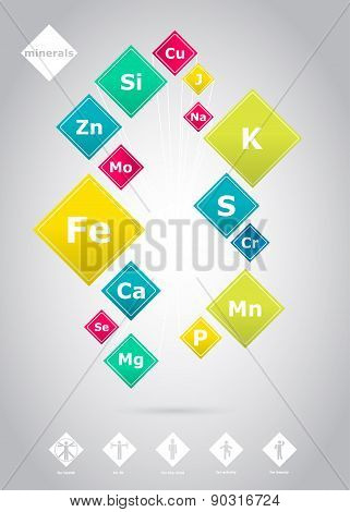 Vector Poster Of The Basic Minerals For Human