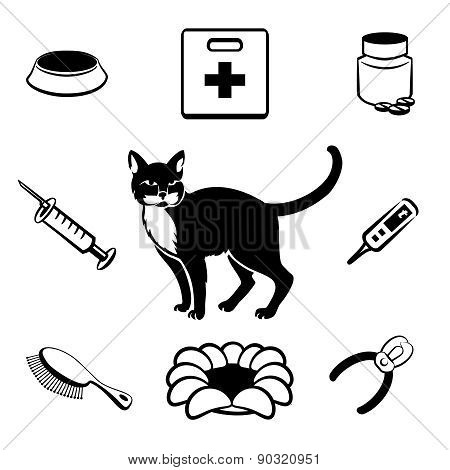 Cat veterinary clinic icons