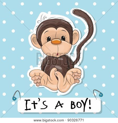 Cute Monkey Boy