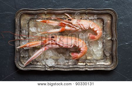 Raw Langoustines On Ice