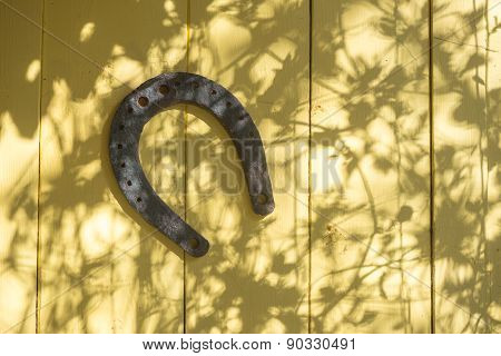 Old Horseshoe And Lacy Shadow