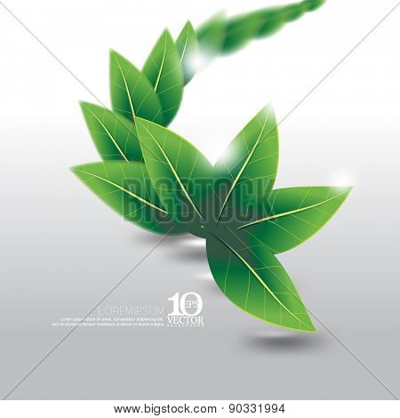 eps10 vector leaves element ecology nature background