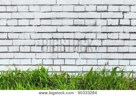 White Brick Wall And Fresh Green Grass