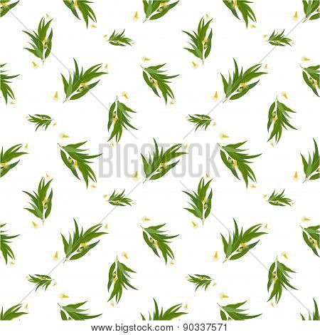 Organic Seamless pattern with eucalyptus leaves and flowers