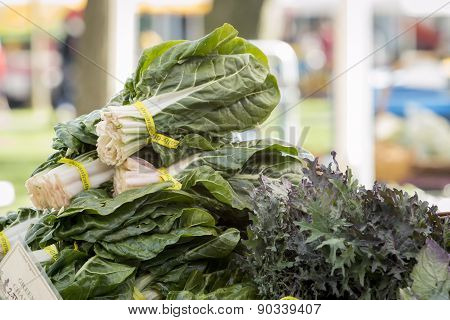 Fresh Organic Vegetables - Bunch Of Leafy Salad Greens At A Farmer's Market