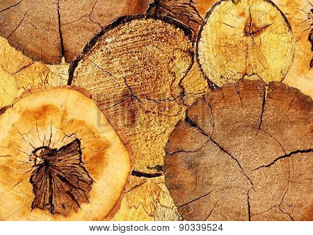 Background with texture cut of a logs