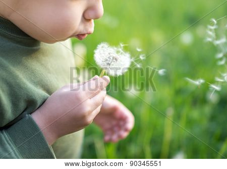 Fun with dandelions kid