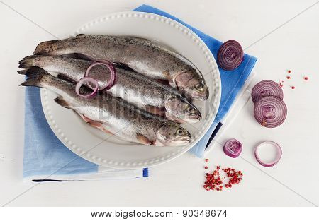 Fresh Rainbow Trouts On A White Plate With Herbs.