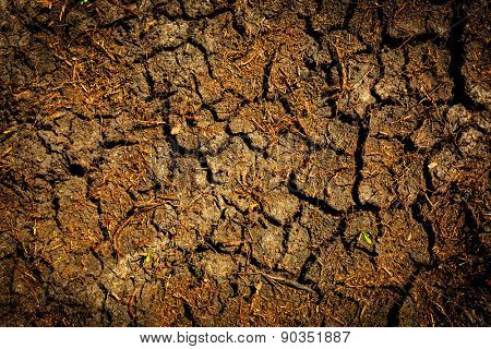 Cracked earth abstract natural background
