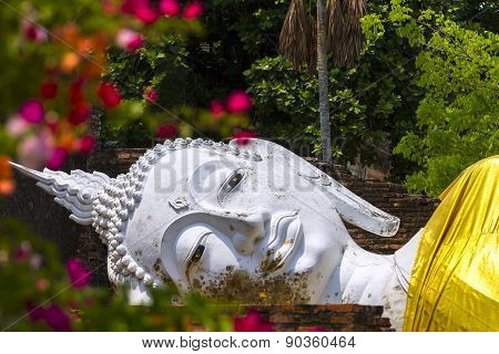 Withe Buddha Sleep In Flower