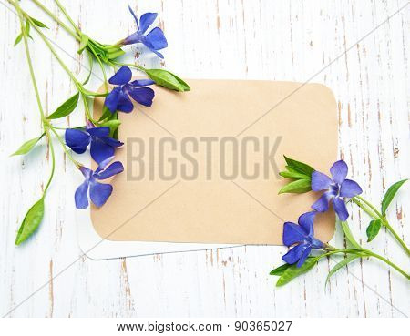 Periwinkle Flowers With Card
