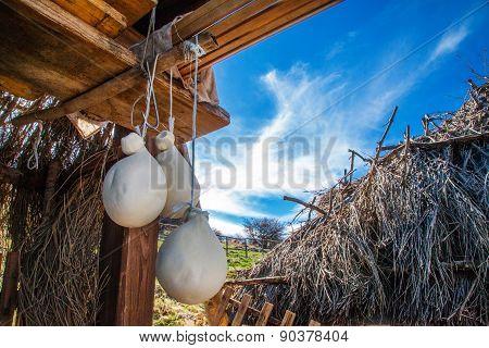 Cheese Hanging