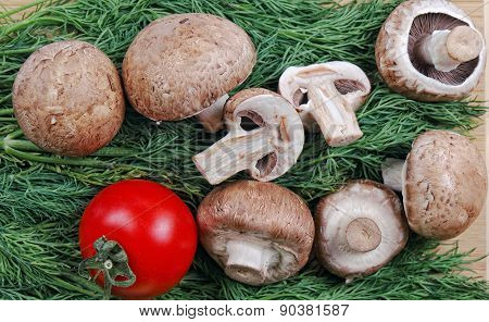 Champignons and red tomato lie on dill