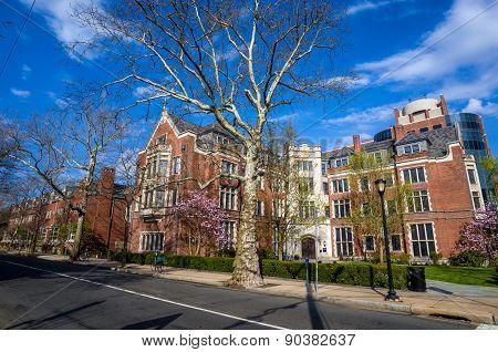 Yale University Buildings In Spring Blue Sky